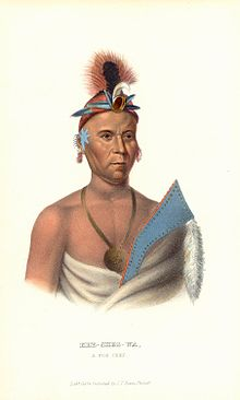 Kee-shes-wa, A Fox Chief, image from wikipedia